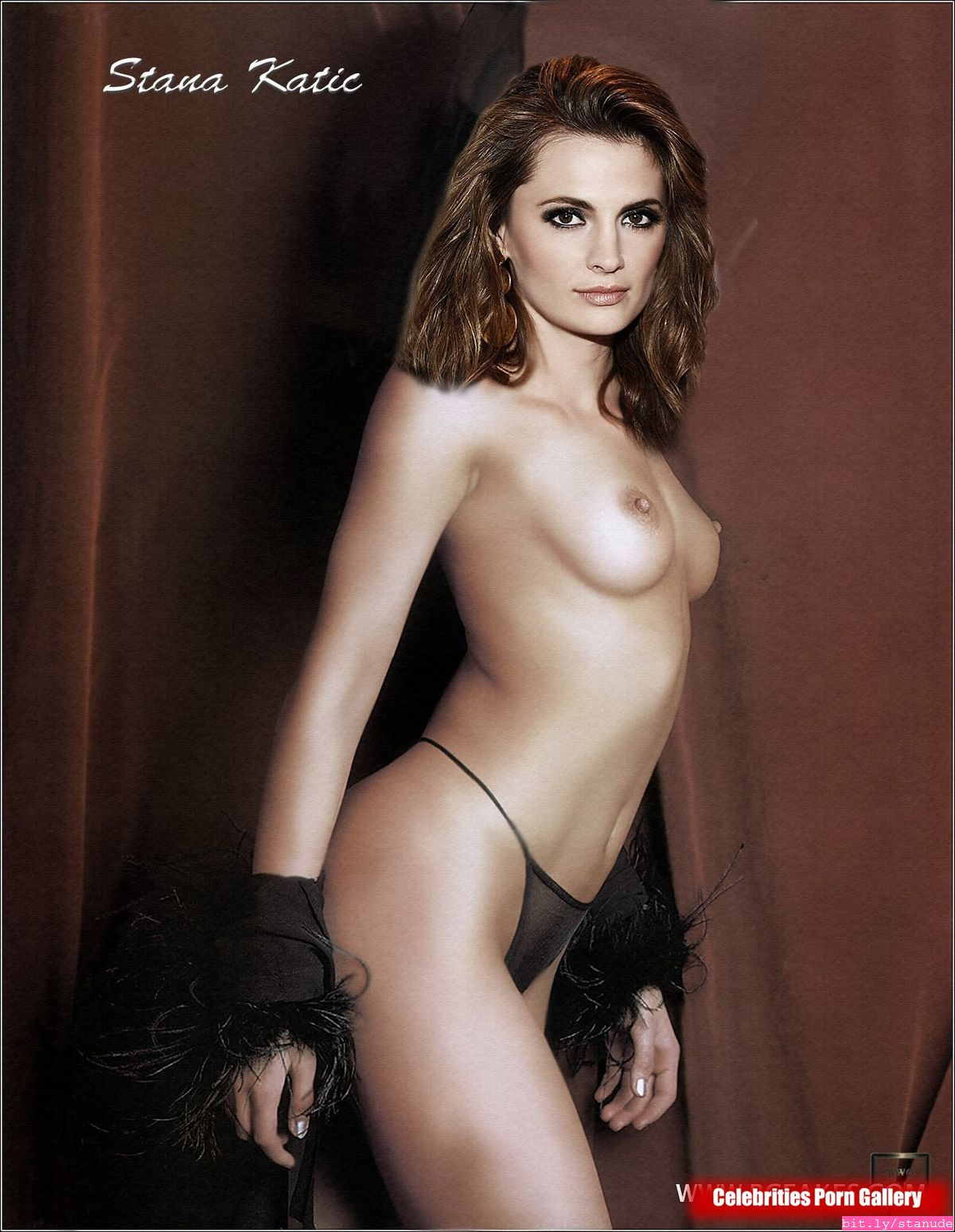 Stana katic naked