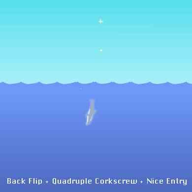 SLACKERJACK - Dolphin ...
