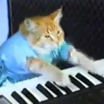 Keyboard Cat, Play Him Off Keyboard Cat