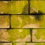 block-wall