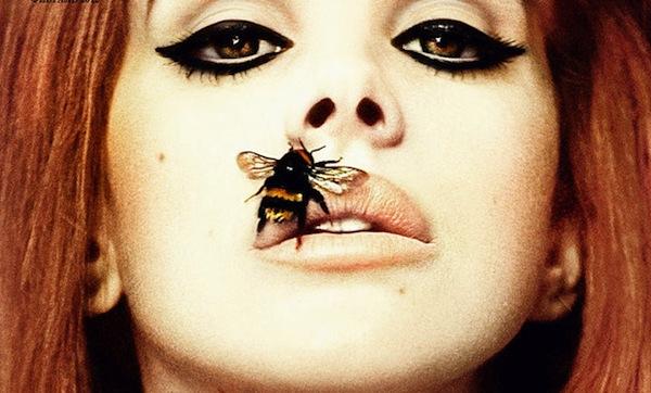 lana del rey bee stung lip