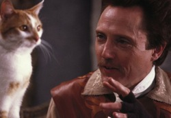 Christopher Walken plays a cat in puss in boots