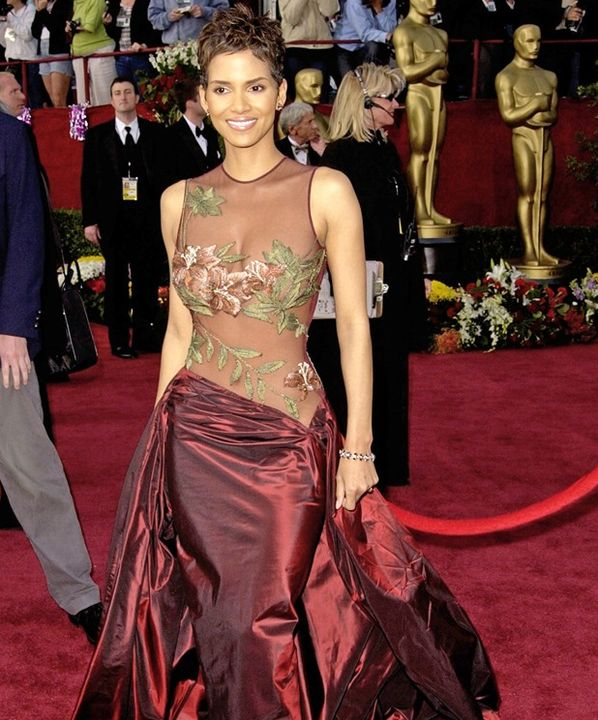 halle berry see through elie saab dress