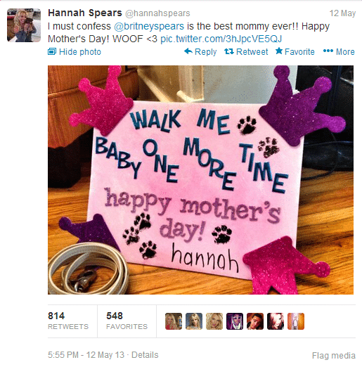 Britney spears dog parody account